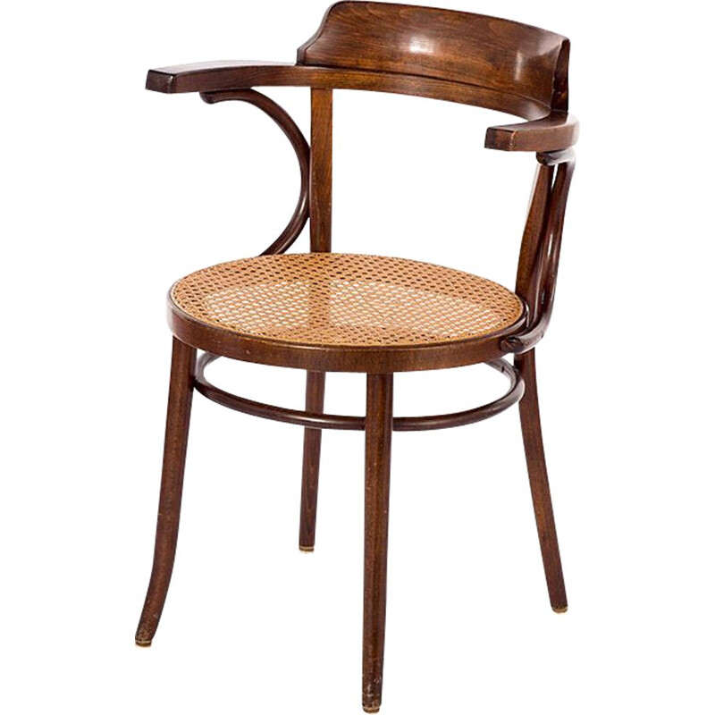 bentwood vintage model 233 chair, 1950s