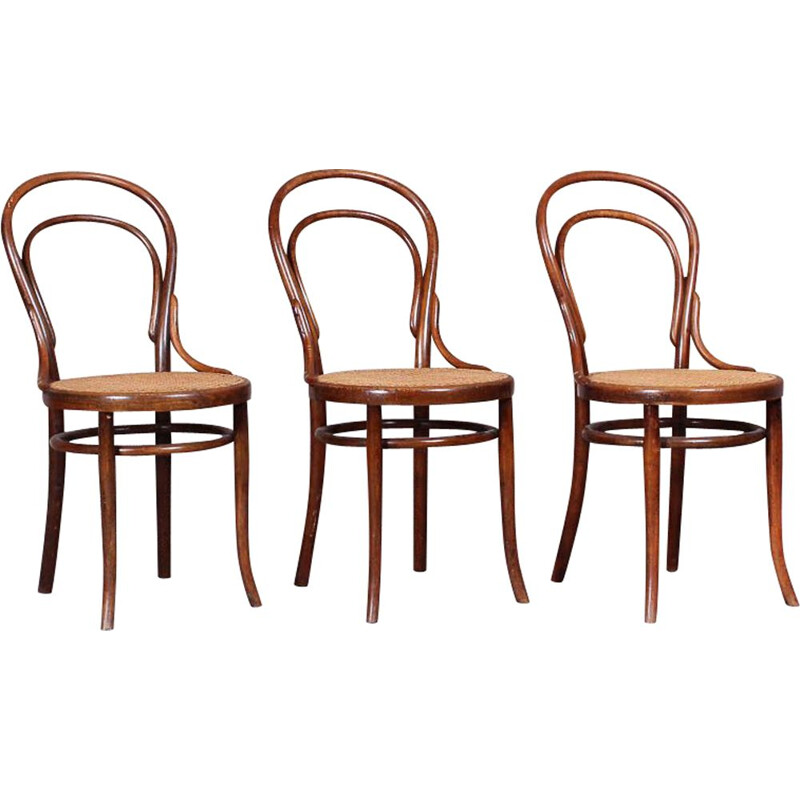 Chair N .14 by Michael Thonet for Thonet, curved beech cane seat, Austria, circa 1859