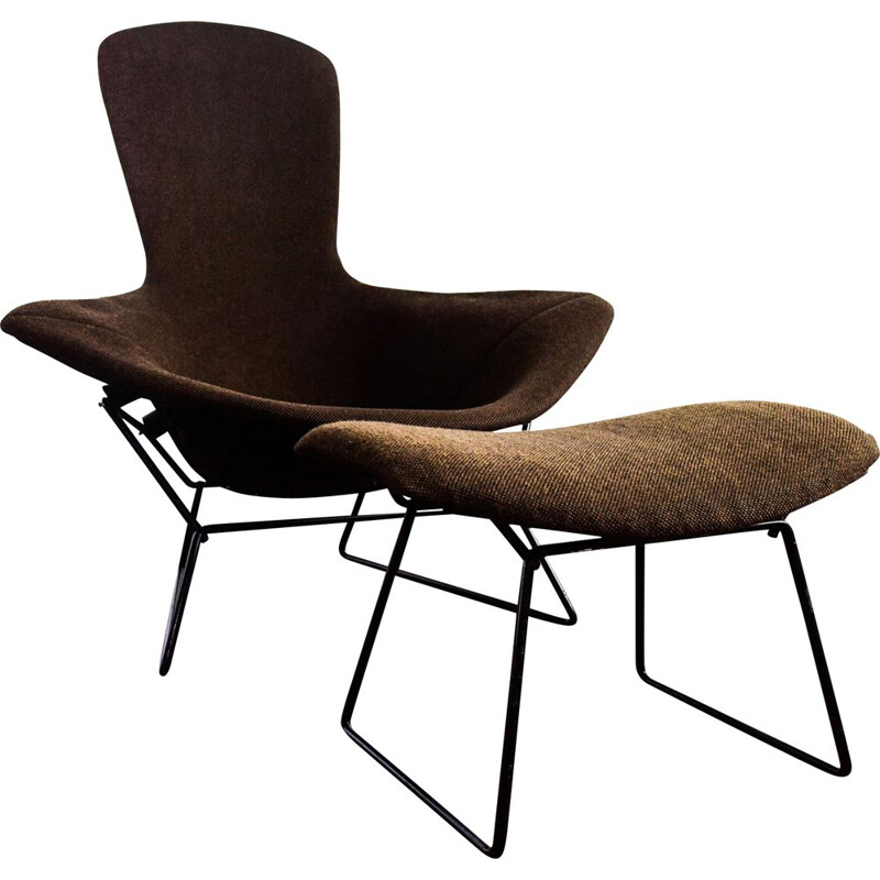 Bird Chair vintage by Knoll International 1977