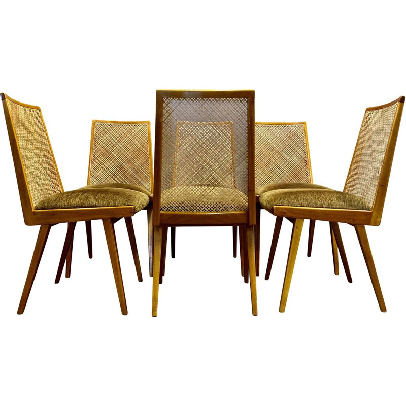 Set of 6 vintage rattan chairs Velvet Beech 1950