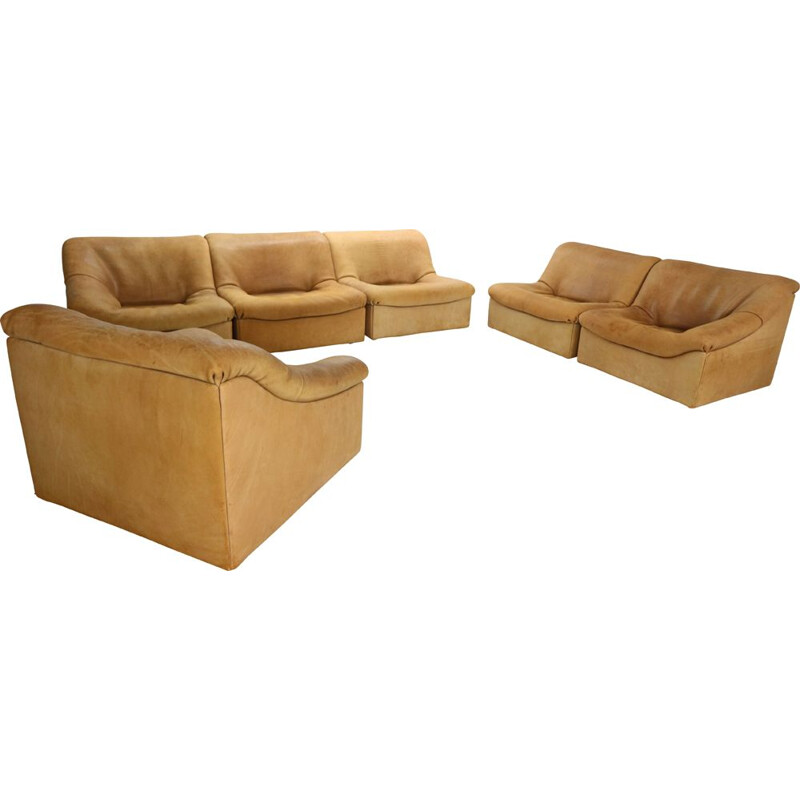 Vintage De Sede, DS46 6 Pieces Living Room Set in Buffalo Leather, Switzerland, 1970s