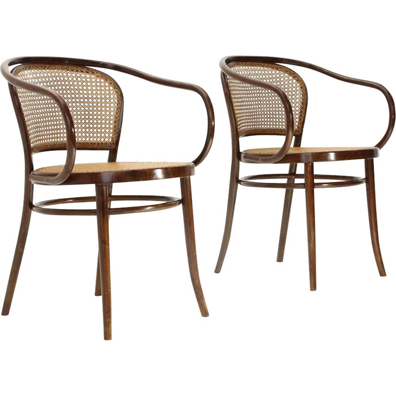 Pair of vintage chairs by Michael Thonet 1950s