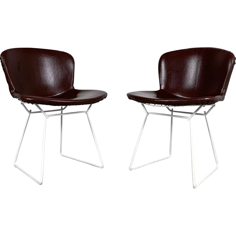 Pair of vintage Dining Chairs by Harry Bertoia for Knoll, 1970s
