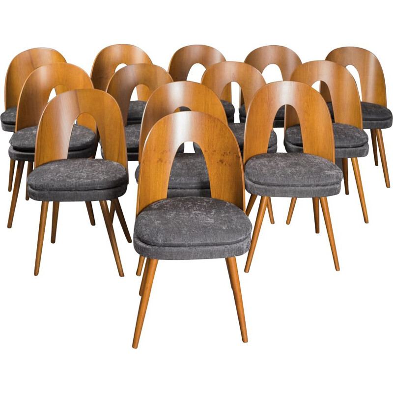 Set of 12 Vintage Walnut Chairs Antonin Suman Czech Republic 1960