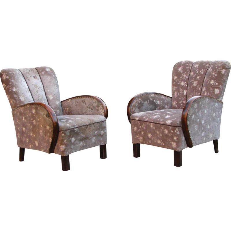 Pair of Vintage armchair Art deco