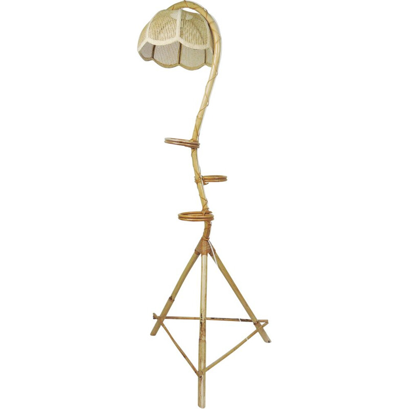 Vintage Bamboo Snake Plant Stand and Floor Lamp, 1970s