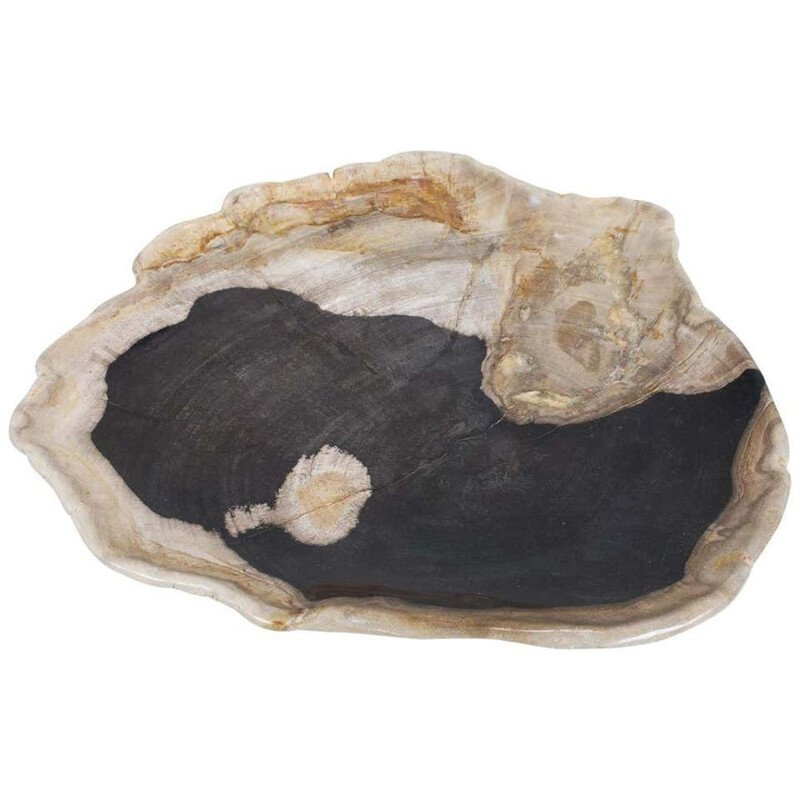 Extra Large vintage Black And Beige Petrified Wooden Platter, Accessory Of Organic Origin