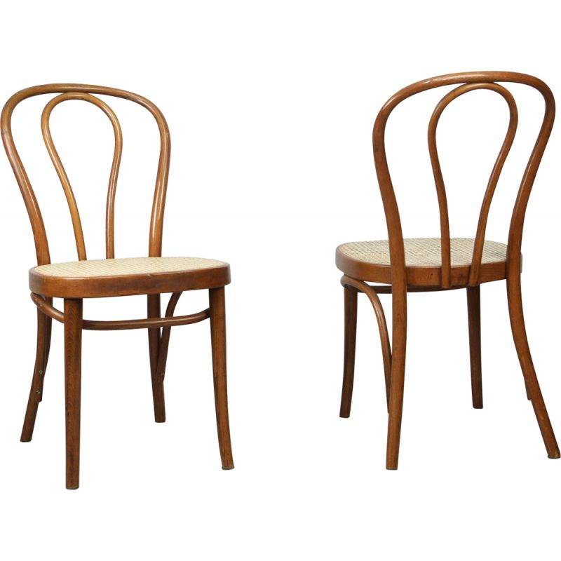 Pair of vintage Brown Chairs by Michael Thonet