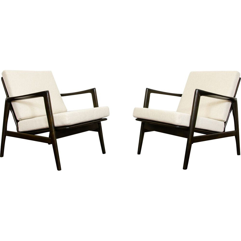 Pair of vintage armchairs type 300-139 by SFM 1960