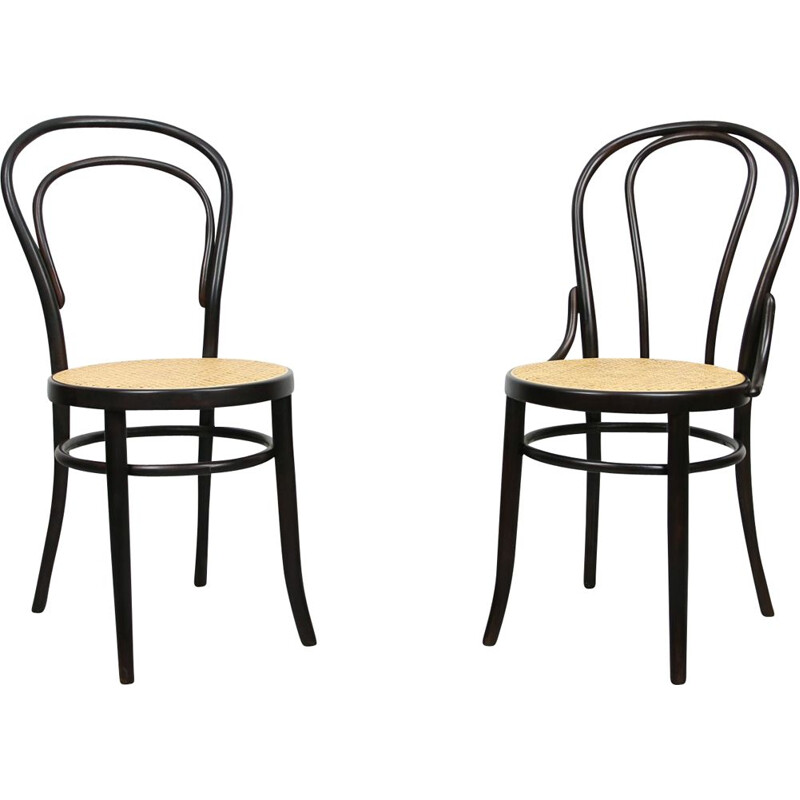 Pair of vintage Dark Brown Chairs by Michael Thonet