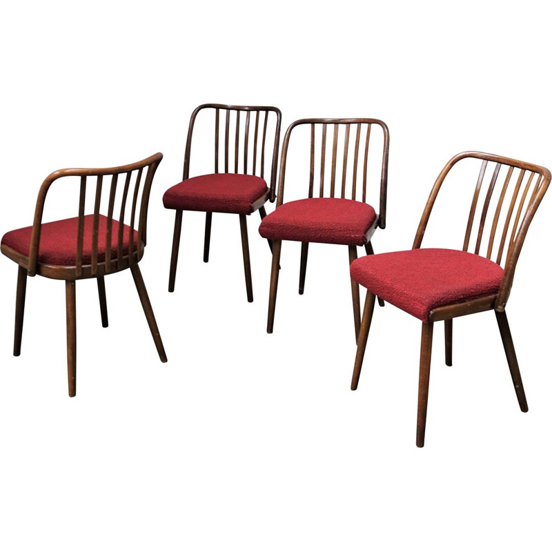 Set of 4 vintage Antonin Suman chair for Tom, Czechoslovakia 1960s
