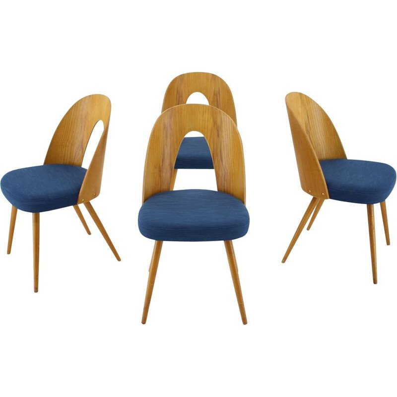 Lot of 4 vintage chairs by Antonin Suman, Czechoslovakia 1960