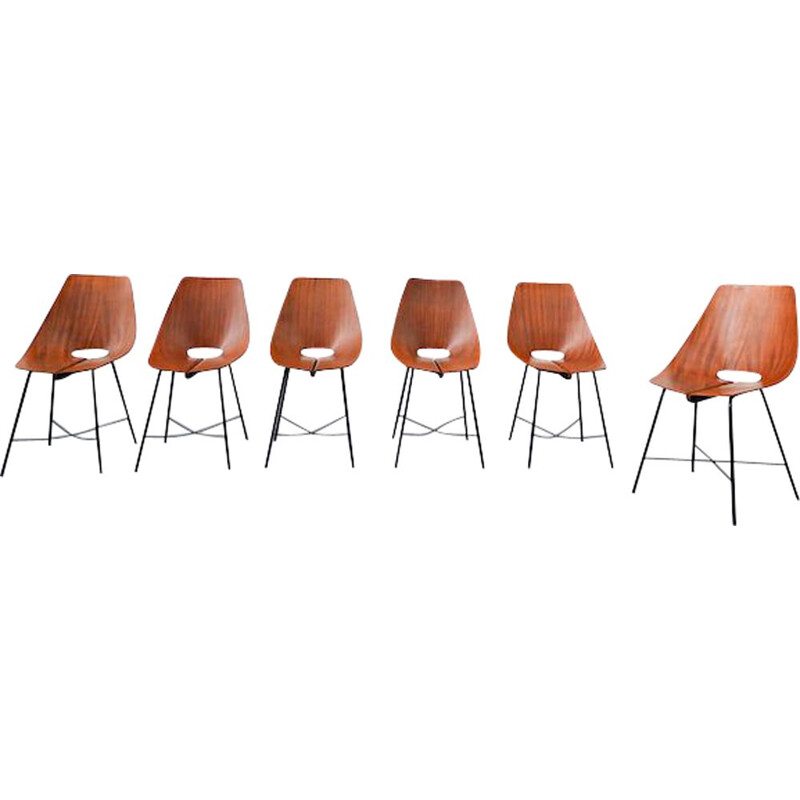 Set of 6 vintage chairs by Carlo Ratti 1960