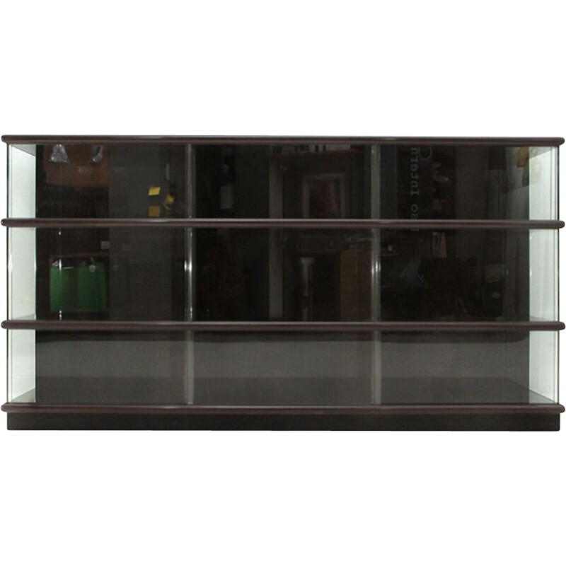 Vintage bookcase in lacquered wood and glass by Eugenio Gerli for Tecno 1970