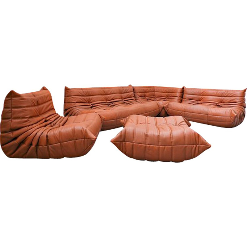 Vintage leather sofa by Michel Ducaroy