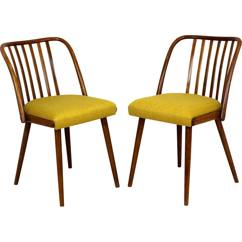 Pair of vintage chairs by Antonin Suman Czechoslovakia 1960s
