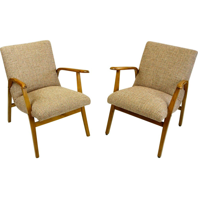 Pair of vintage armchairs by Roland Rainer