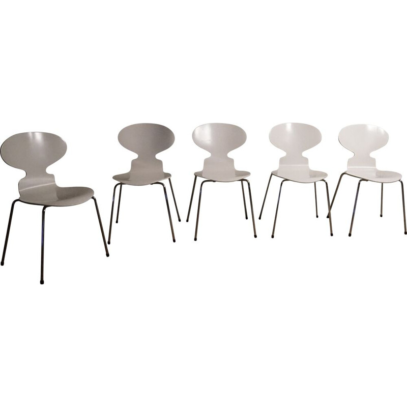 Set of 5 mid century ant chairs by Arne Jacobsen for Fritz Hansen, 1950s