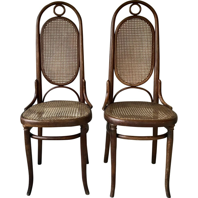 Pair of vintage bentwood and cane chairs by Thonet, 1920