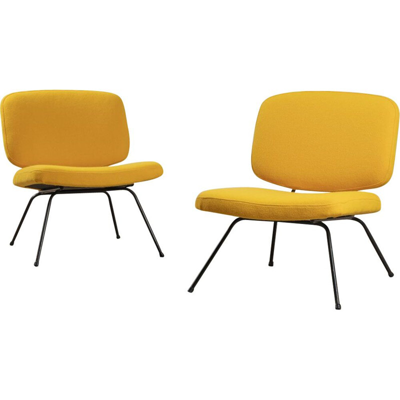 Pair of vintage armchairs Cm 190 for Thonet, 1956