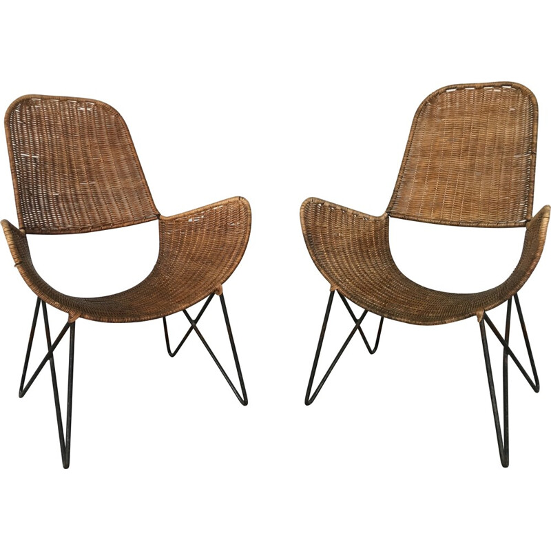 """Pair of """"Brouette chair"""", Raoul GUYS - 1950s"""