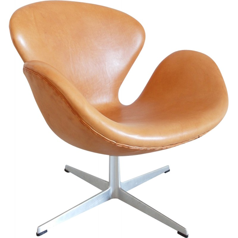 Brown Easy Chair In Leather And Aluminium Model Swan By Arne