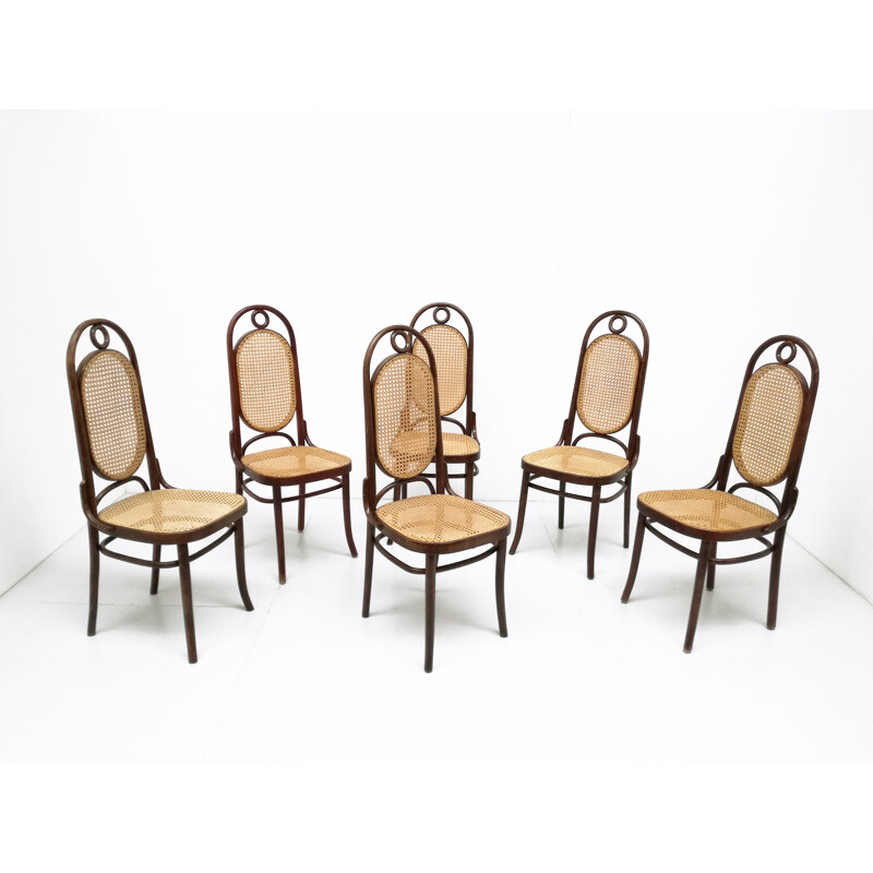 Set of 6 chairs in birchwood and straw by Thonet model 17 - 1930s