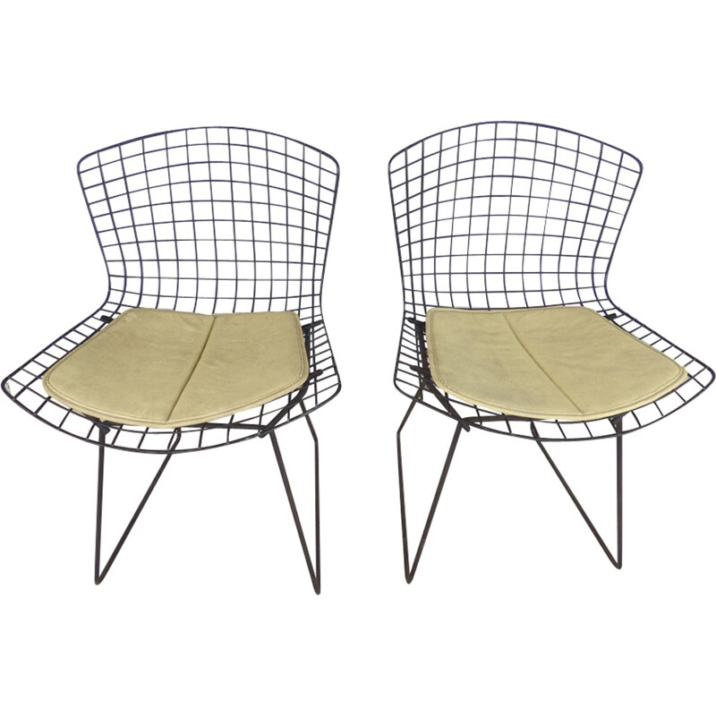 Pair of vintage chairs by Harry Bertoia for Knoll - 1960s