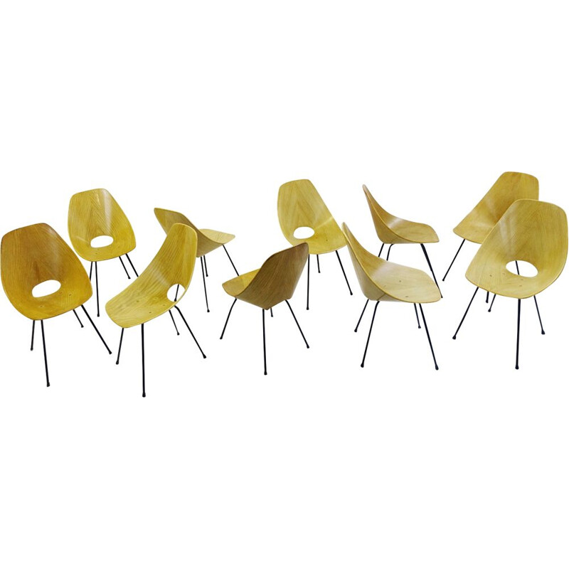 Set of 10 Medea Dining Chairs By Vittorio NOBILI For Tagliabue