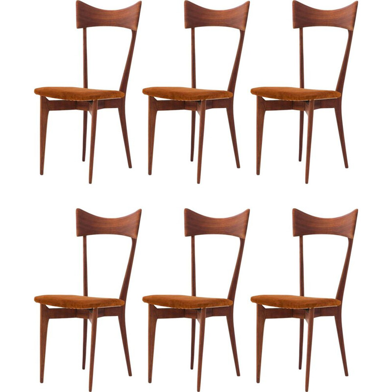Set of 6 vintage dining chairs by Ico Parisi 1950