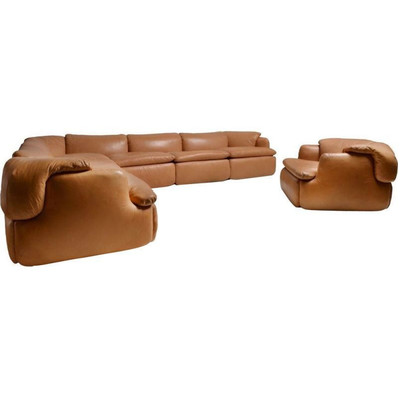 Vintage brown leather sofa by Rosselli for Saporiti in glass fiber 1970