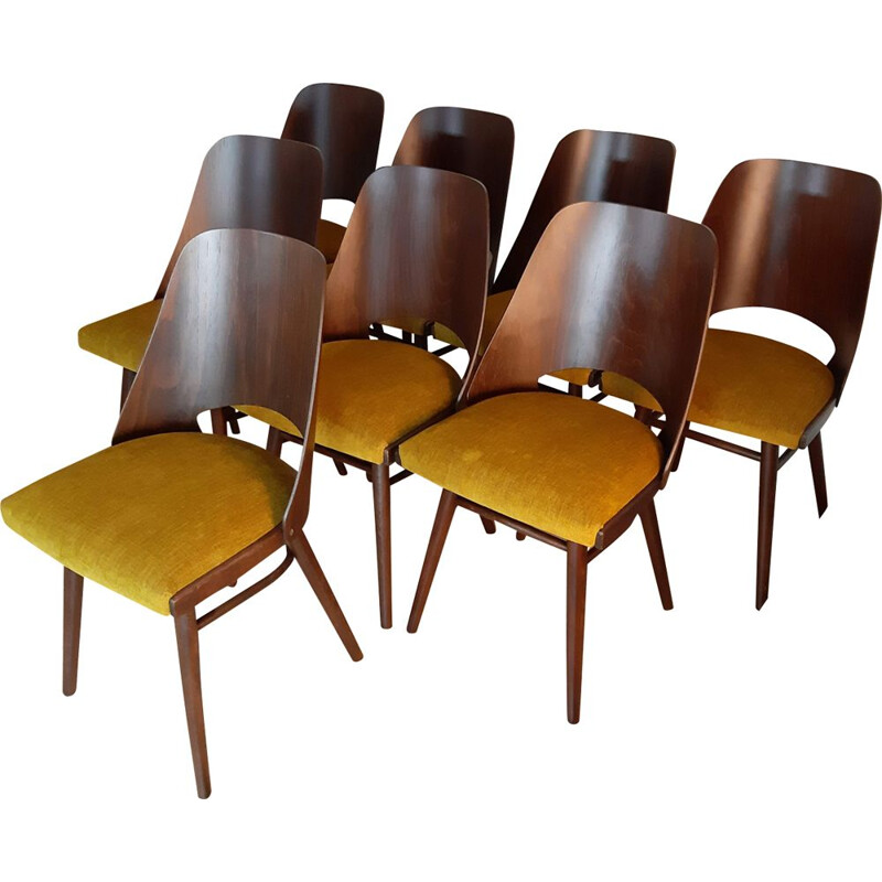 Set of 8 vintage Jirak yellow chairs for TON in walnut