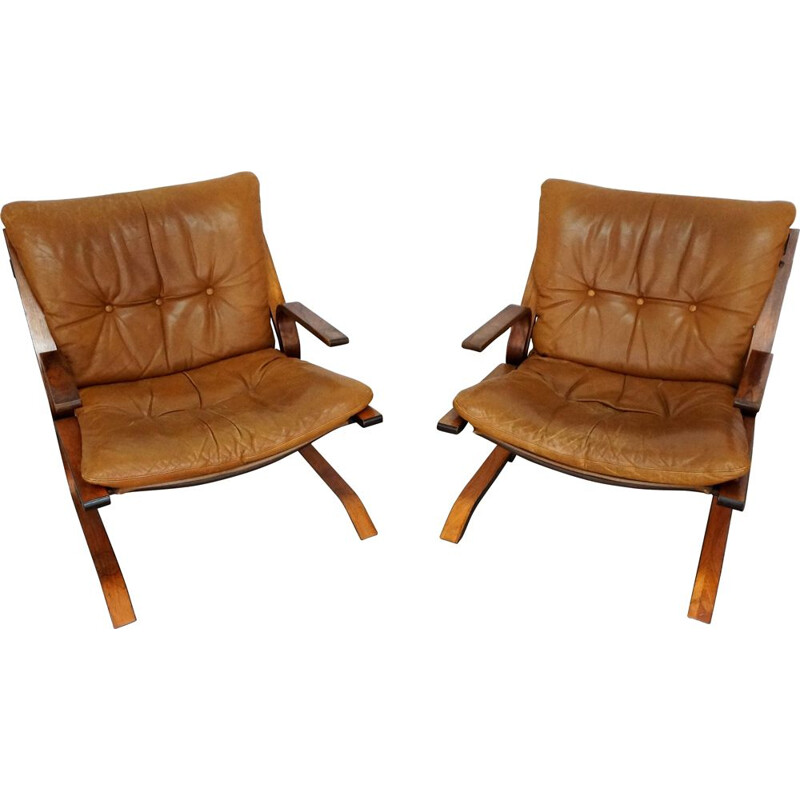 Pair of Pirate armchairs in leather and rosewood