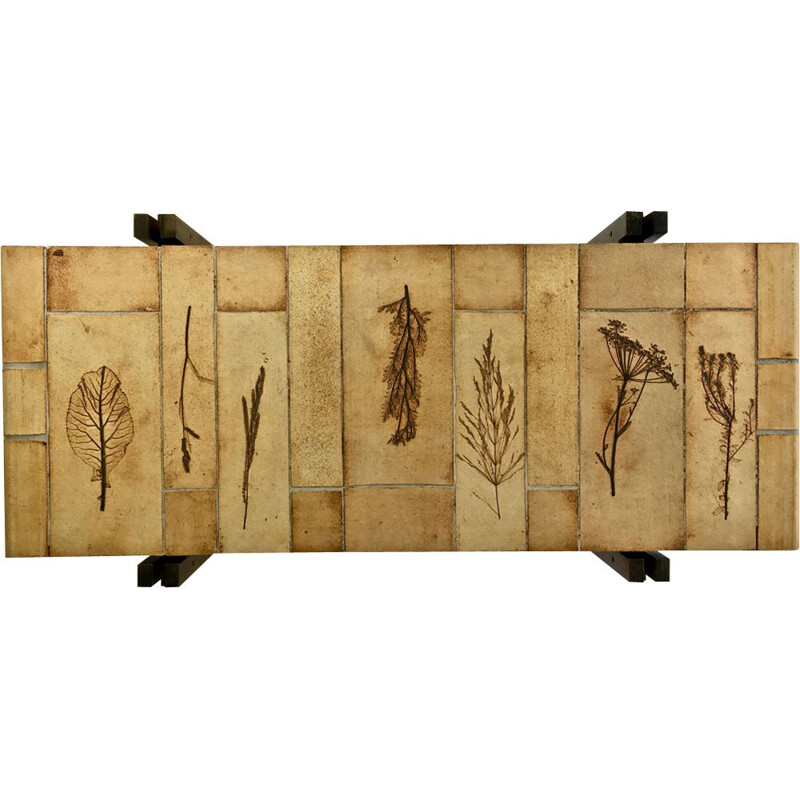 Vintage coffee table model Herbarium by Roger Capron, 1970s
