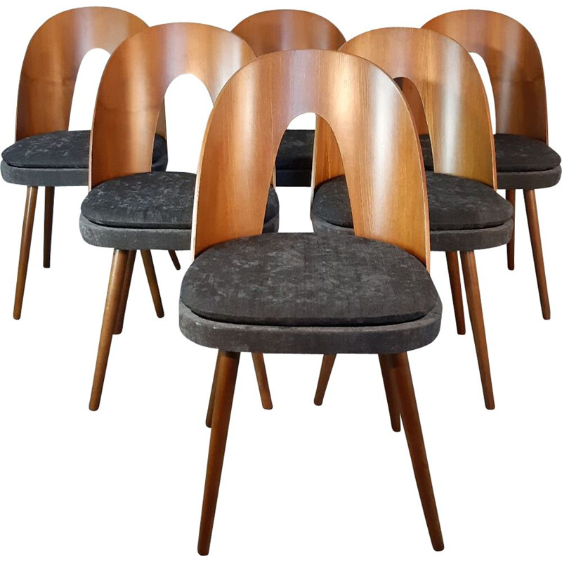 6 vintage dining chairs in walnut and fabric by Antonin Suman in the 60s