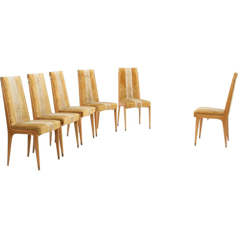 Set of 6 chairs in maple and velvet by Vittorio Dassi