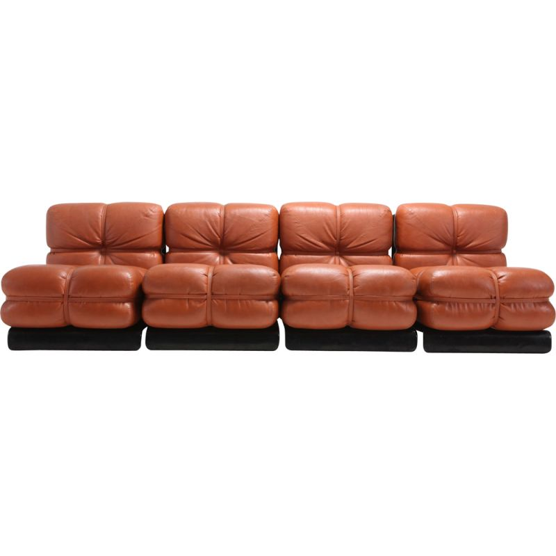 Vintage Sofa San Martino Sectional by Carla Venosta for Full 1980s