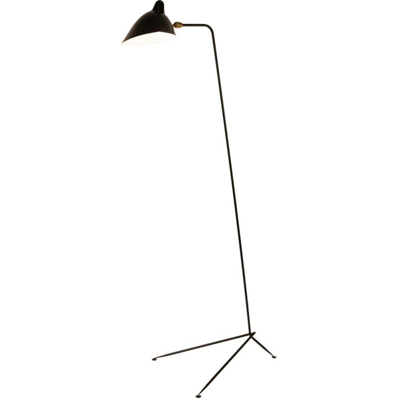 Floor lamp with one still arm by SERGE MOUILLE