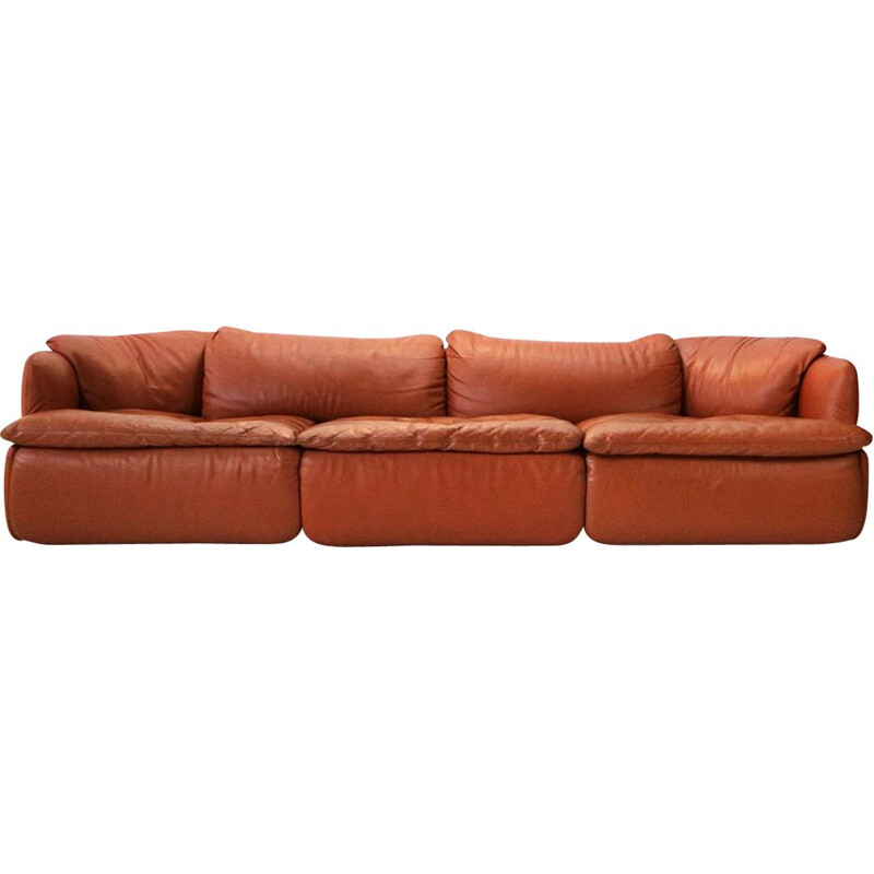 Vintage Confidential sofa for Saporiti in brown leather and steel 1970