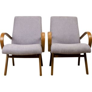 Set of 2 Vintage armchairs Model 53 by Jaroslav Smidek for Ton