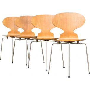 Set of 4 vintage 3100 Ant chairs for Hansen in plywood