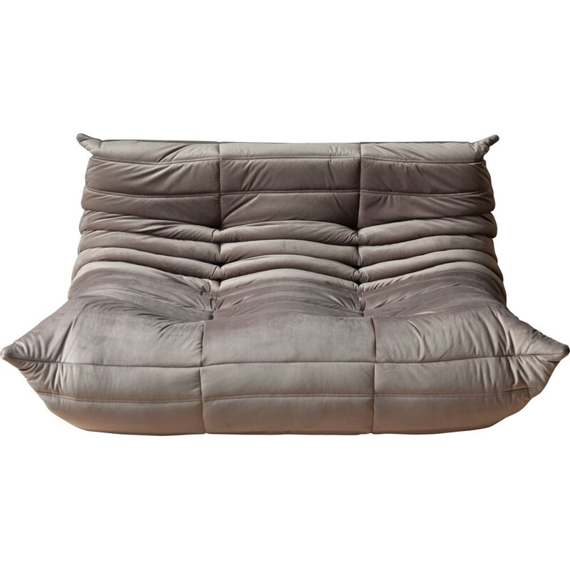 Togo 2-seater sofa in grey velvet by Michel Ducaroy
