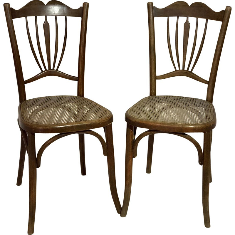 Pair of vintage chairs for Japy in wood 1930