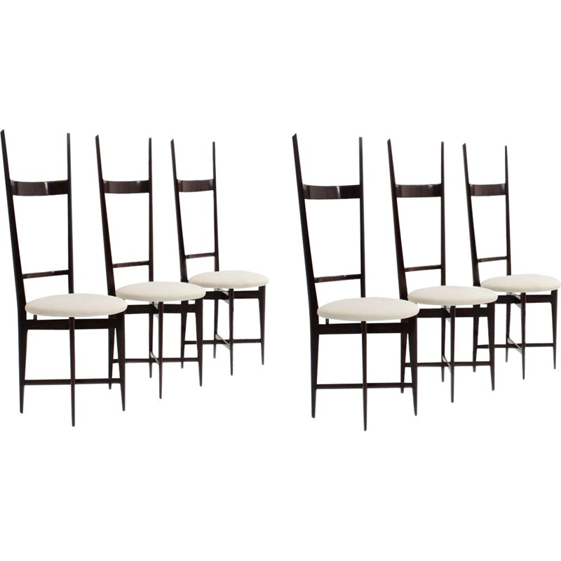 Set of 6 vintage dining chairs by Santambrogio e De Berti, 1950s