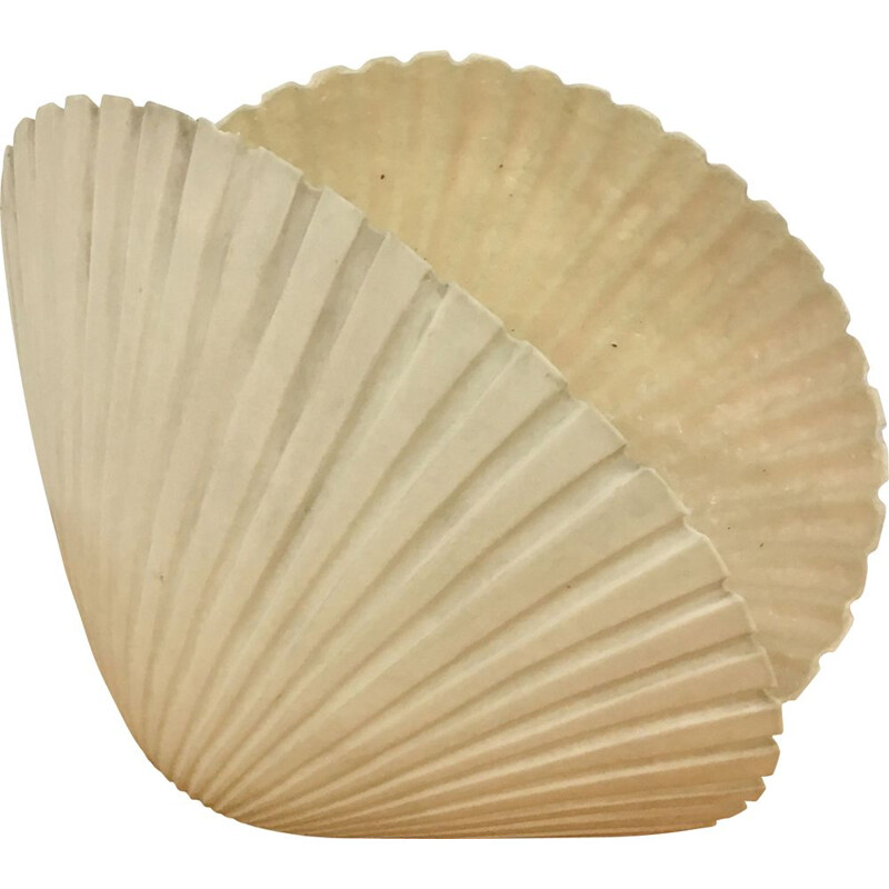 Vintage seashell lamp by André Cazenave, France 1970