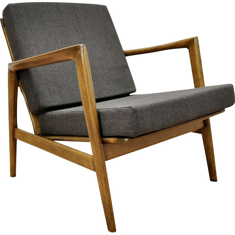 Vintage armchair 300-139 by Swarzędzka Furniture Factory, 1960s
