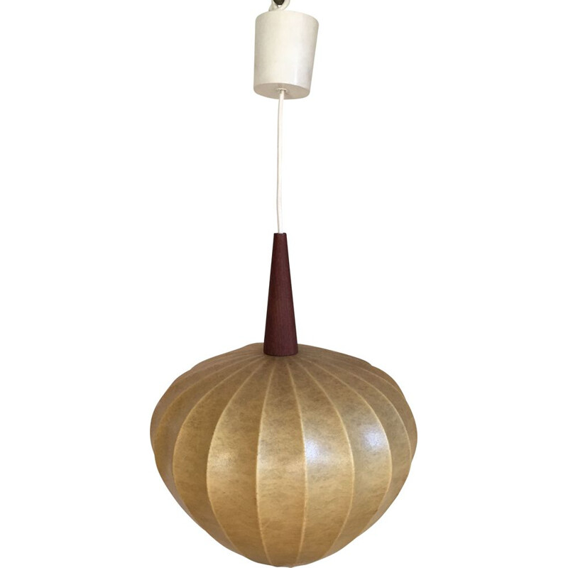 Vintage resin and teak hanging lamp, 1960